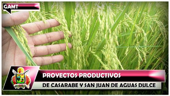 proyectos-productivos-de-casarabe-y-san-juan-de-aguas-dulce