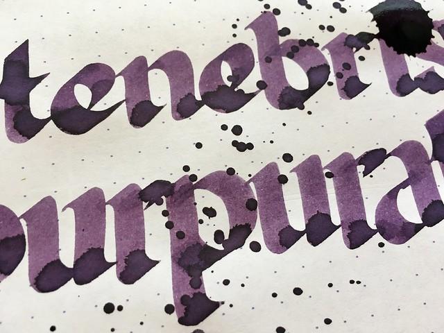 Ink Shot Review Franklin-Christoph Tenebris Purpuratum @1901FC 10
