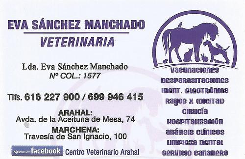 AionSur 34295228961_cd61058d6a_d Una vecina de Arahal denuncia el envenenamiento de su perro Arahal Provincia Sin categoría