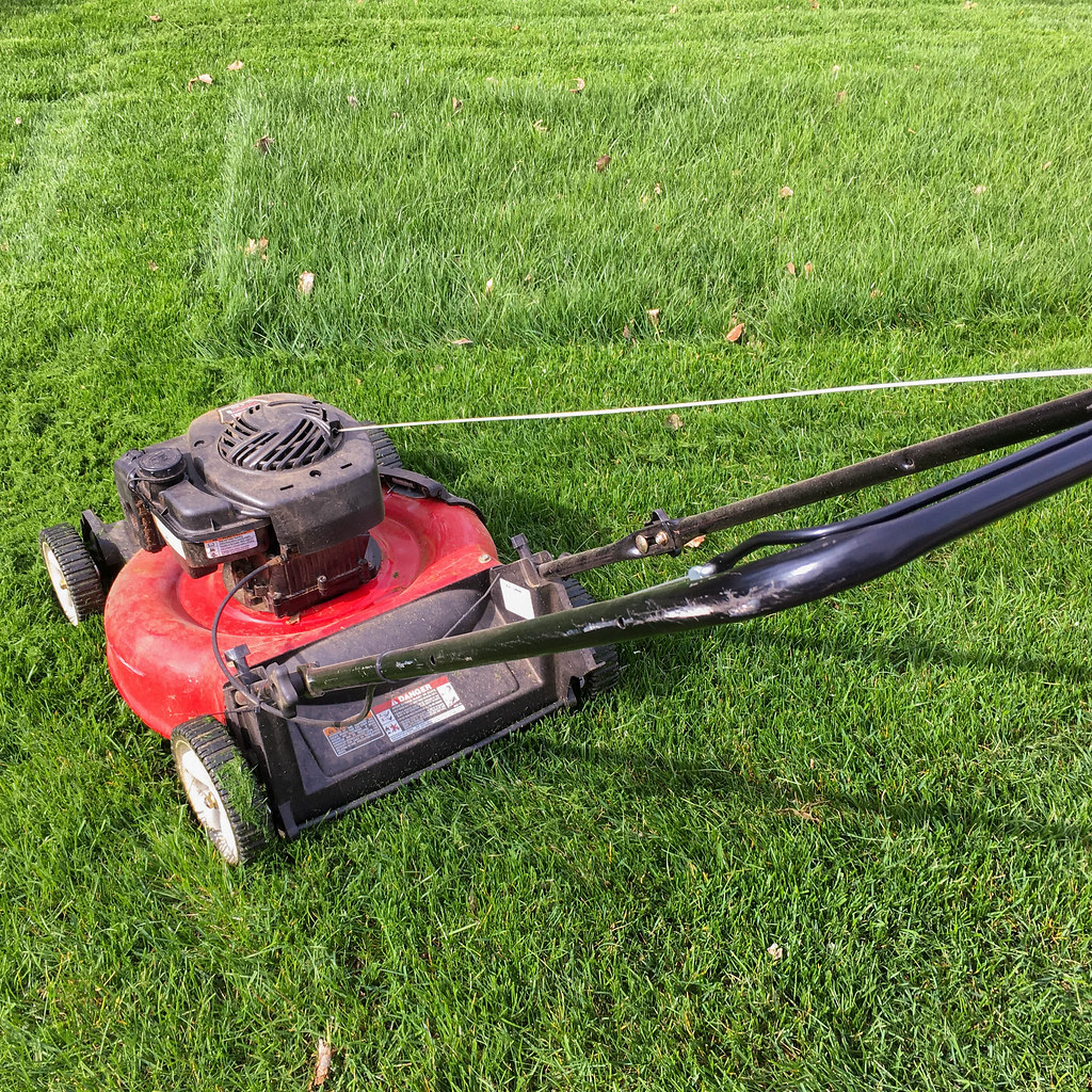 Cutting the grass
