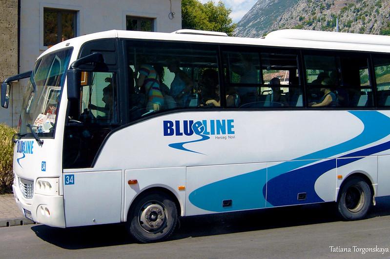 "Автобус ""Blue line"""