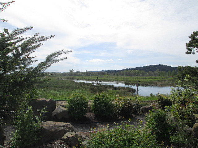 Fern Hill Wetlands