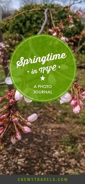 Springtime_NYC