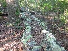 Rock Wall 5