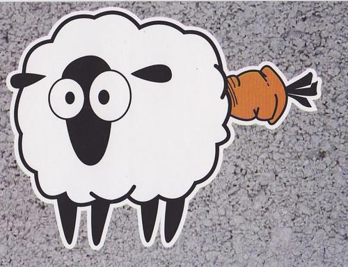 mouton_4