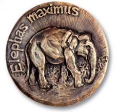 Elephas Maximus medal