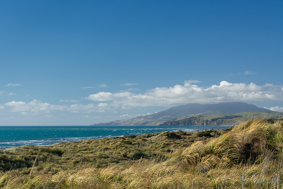 Kawhia, hot, water, Beach, North, Island, New Zealand, rand, Uus, Meremaa, Kaido Rummel