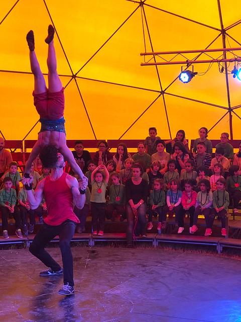 Sortida al circ