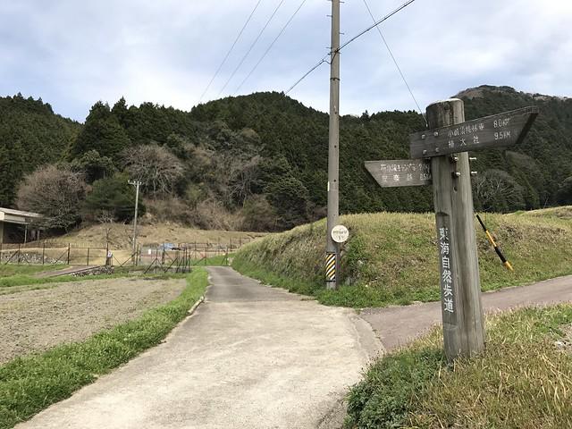 野登山 ミツマタの森ルート 舗装路 東海自然歩道分岐