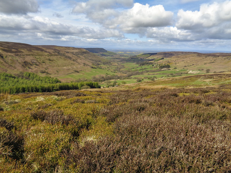 Admiring the view of Scugdale