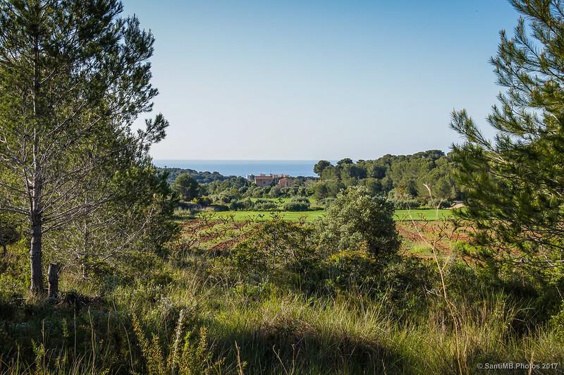 Campos de Cunit desde cerca del Fondo d'en Roig