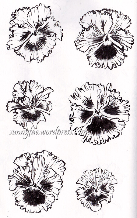 monocrome frilly pansies