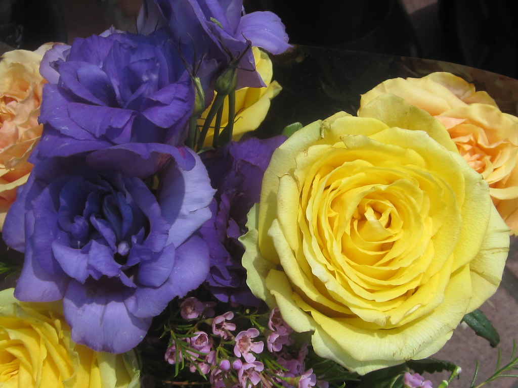 Yellow roses and blue flowers bouquet shaireproductions flickr yellow roses and blue flowers bouquet by shaire productions izmirmasajfo