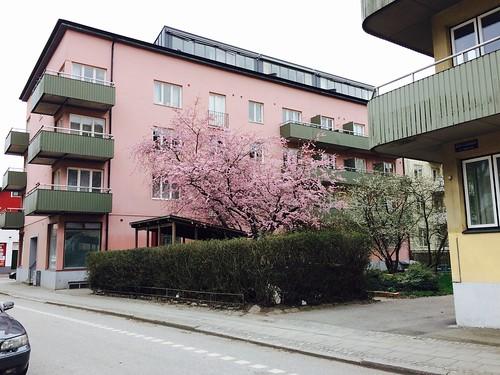 flormansgatan