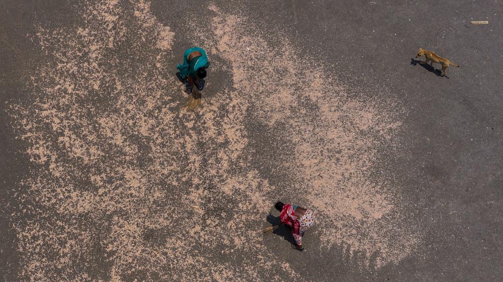 Kite Over Vizag India Fishing Port