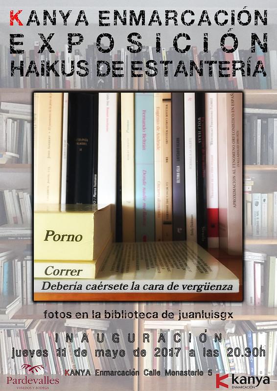 HAIKUS DE ESTANTERÍA - EXPOSICIÓN EN KANYA ENMARCACIÓN - DESDE EL 11 DE MAYO´17