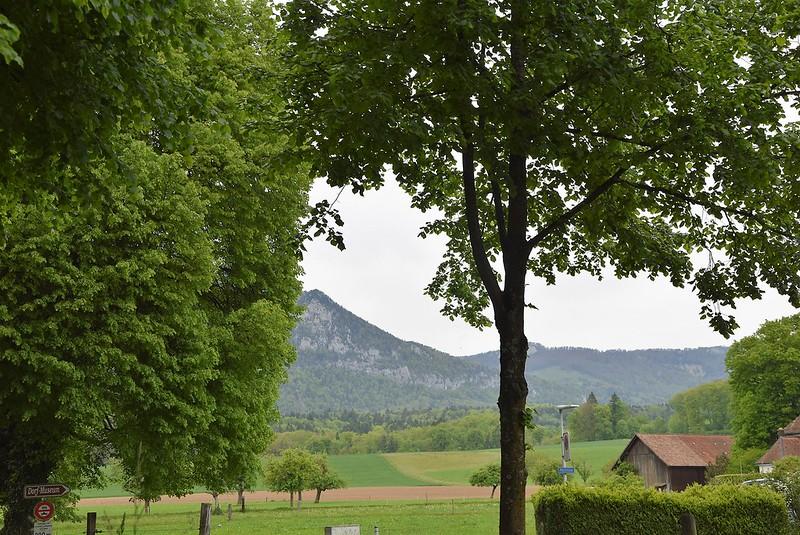Feldbrunnen village (10)