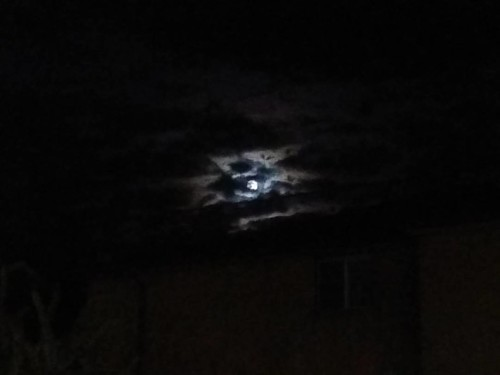 Moon behind clouds, looking south #toronto #moon #night #clouds
