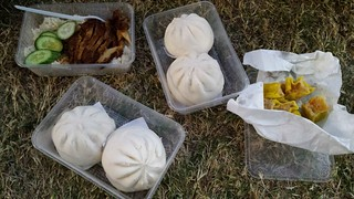 Mock Duck and Rice, BBQ Buns and Dim Sim from Buddha's Birthday Festival