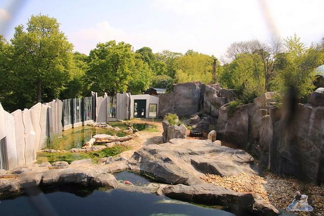 Tierpark Schönbrunn 29.04.2017 162