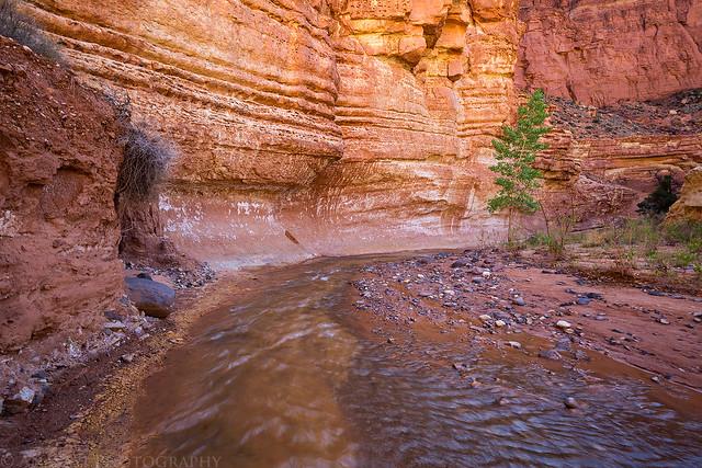 Sulphur Creek Bend