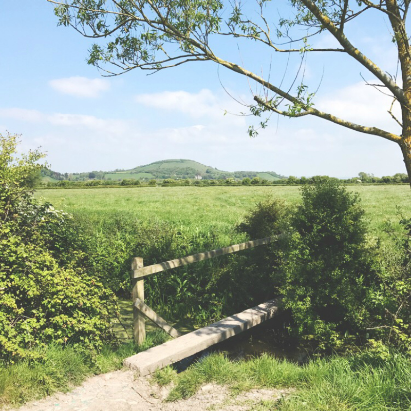 somerset walks lifestyle bloggers in the uk vivatramp blog
