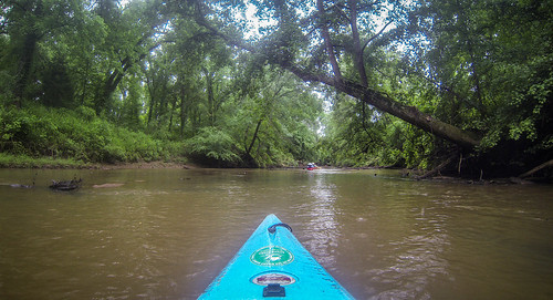 Long Cane Creek with Lowcountry Unfiltered-29