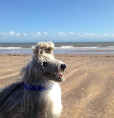 Baxter likes the beach. 😂 . #artdoll #ooakdog #ooakdoll #ooakartdoll #poseabledog #poseableartdoll #sixthscale
