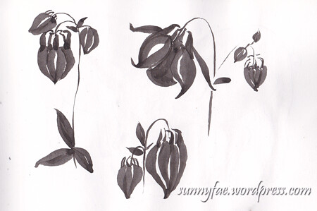 Aquilegia (Columbine) black brush pen