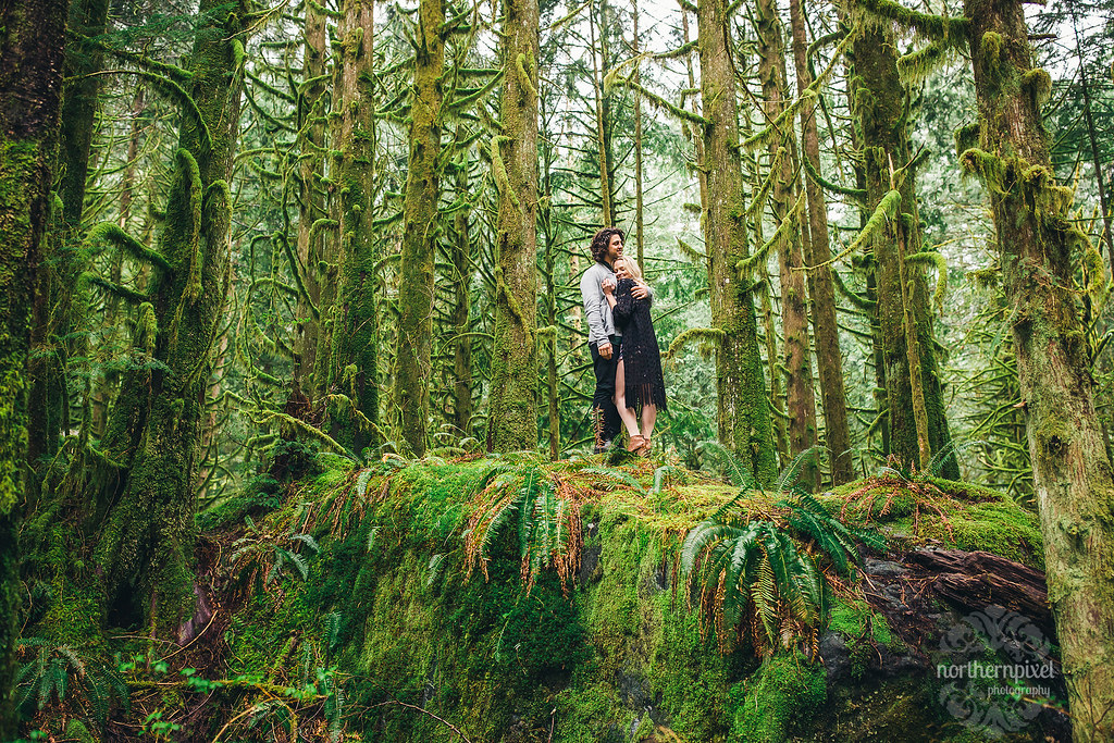 Engagement Session, Maple Ridge BC Elopement Forest Golden Ears