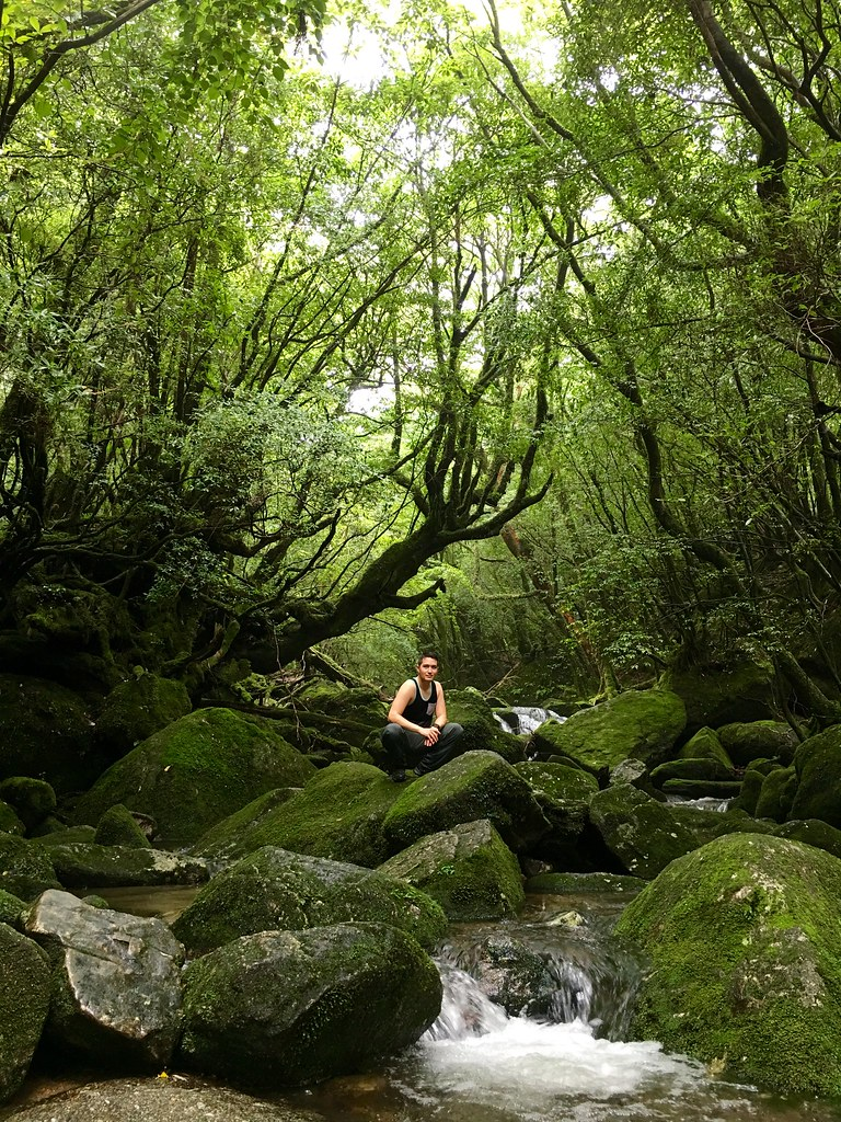 Part 1: The Beauty of Yakushima Island