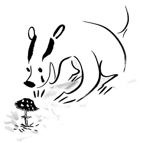 Everyday badger stories #badger #badgerlog #parenting #mushroom #happy #positive