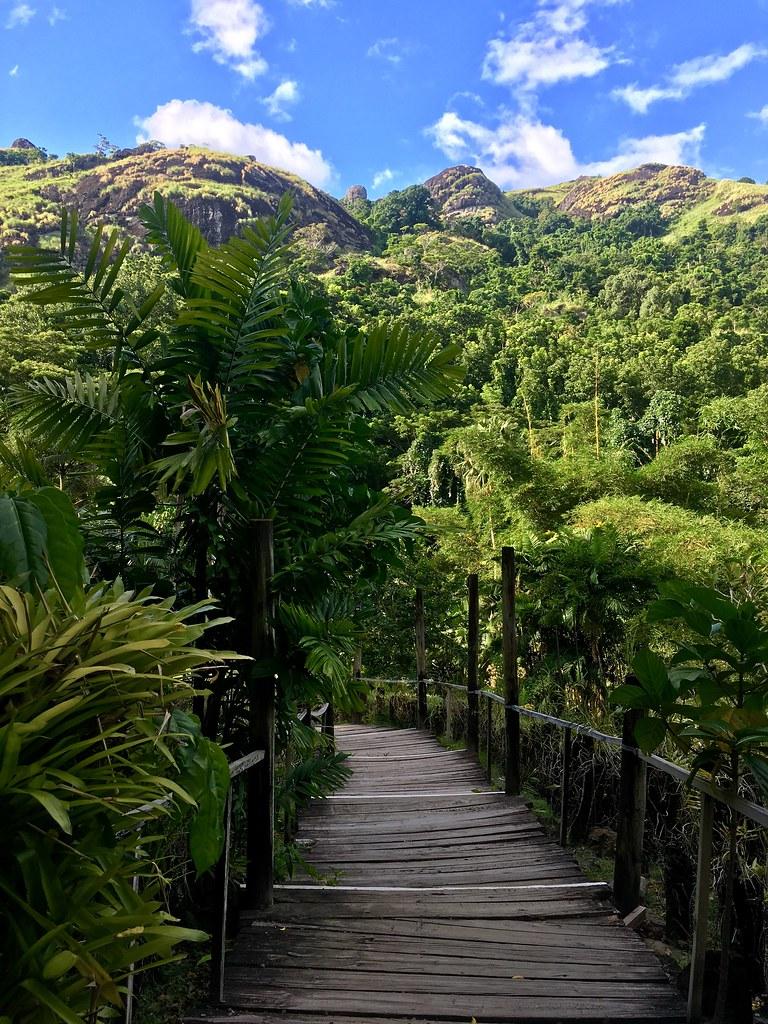 Fidjis