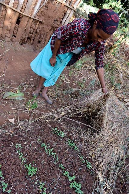 UNICEF Ethiopia 2017 03-1876 (2)
