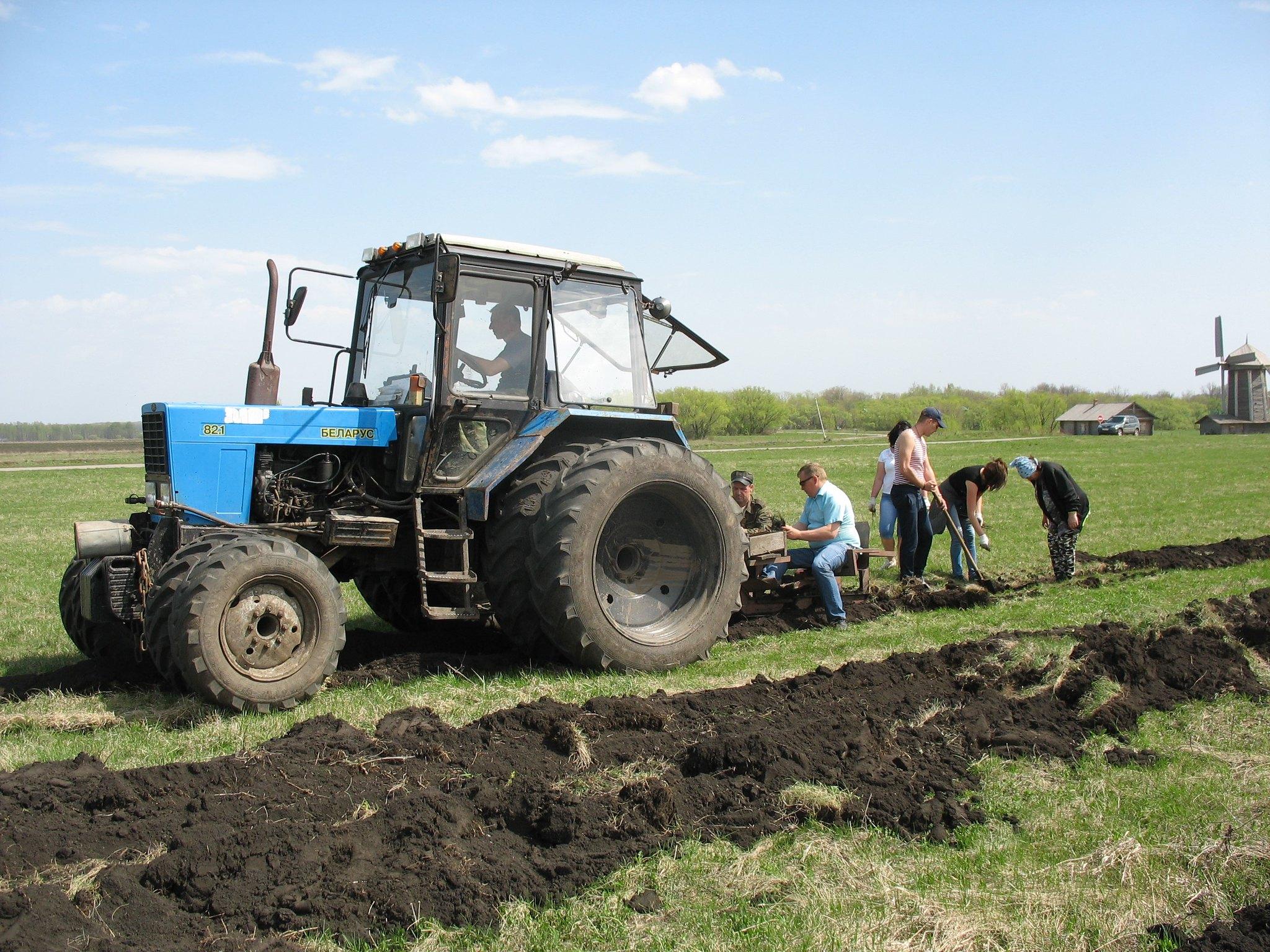 Всероссийский день посадки леса в музее Тарханы