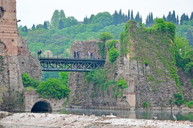 Detalhes da ponte e olha a fofura das aves no rio.