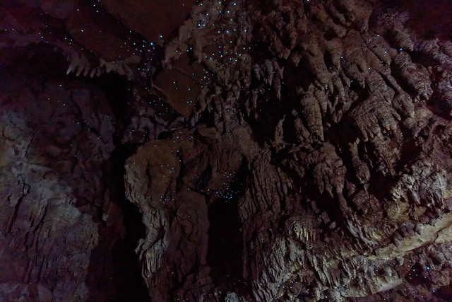 Glow worms w jaskinii Waipu