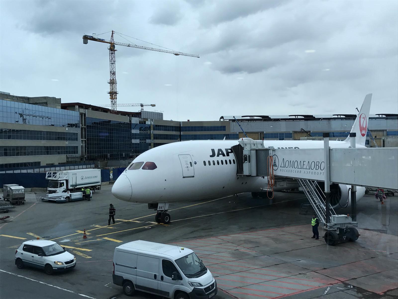 JAL Москва Токио Boeing 787