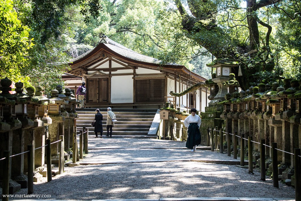 Via che porta al Wakamiya Shrine