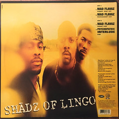 SHADZ OF LINGO:MAD FLAVA(JACKET B)