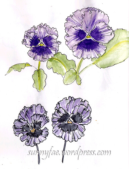 watecolour frilly pansies