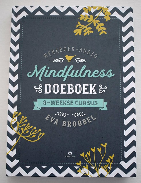 Mindfulness doe boek