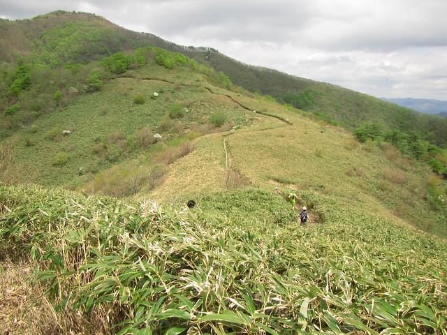 蒜山トレラン (81)