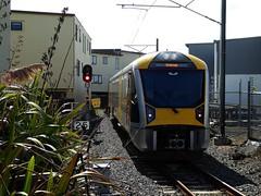 Auckland Suburban