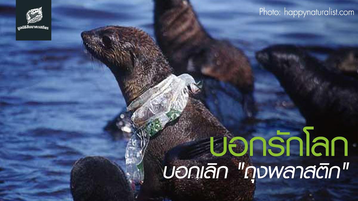 เลิกใช้ถุงพลาสติก