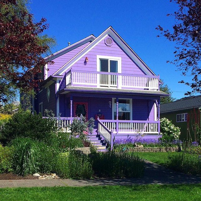 Love this purple house 💜💗💜