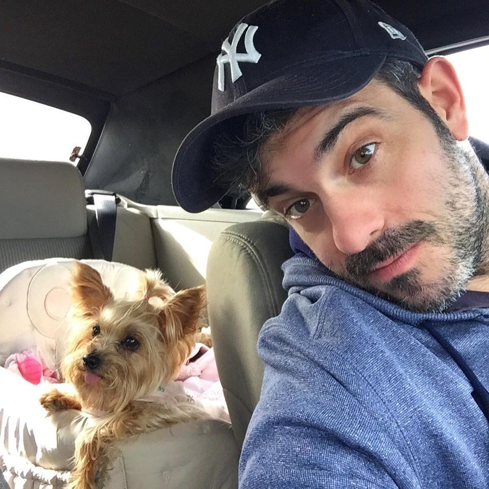Viajar a Paris con Perro - Travel to Paris with dog viajar a paris con perro - 34560000236 d663a91502 o - Viajar a Paris con perro