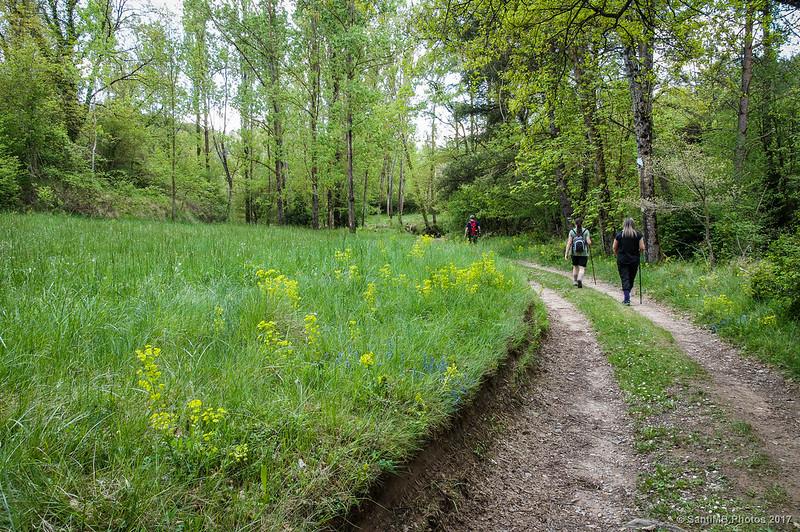 Caminando cerca de Borredà