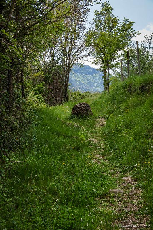Sendero en el núcleo de Can Sol de Borredà