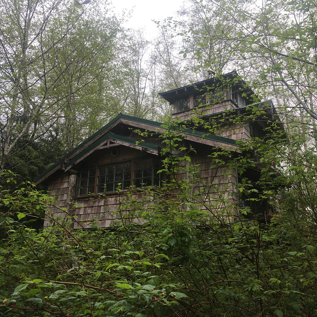 Off-grid Cabin In The Woods